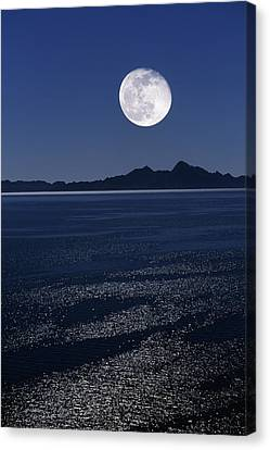 Sea Moon Full Moon Canvas Print - Moonrise Over Sea by David Nunuk
