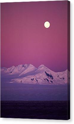Moonrise Over Snowy Mountain Canvas Print by Stockbyte