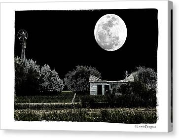 Canvas Print featuring the photograph Moon's Light by Travis Burgess