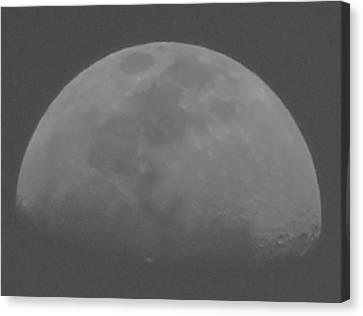 Moon's Shadow Canvas Print by Elizabeth  Doran
