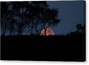 Moonscape Canvas Print by Betsy Knapp