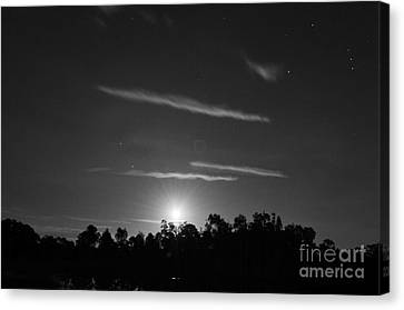 Moonshine And Orion's Belt Canvas Print