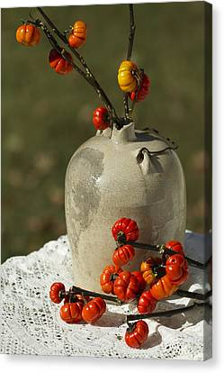 Moonshine Jug And Pumpkin On A Stick Canvas Print by Kathy Clark