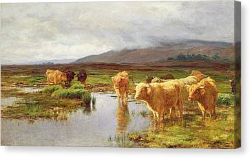 Empty Canvas Print - Moorlands And Mist by Duncan McLaurin