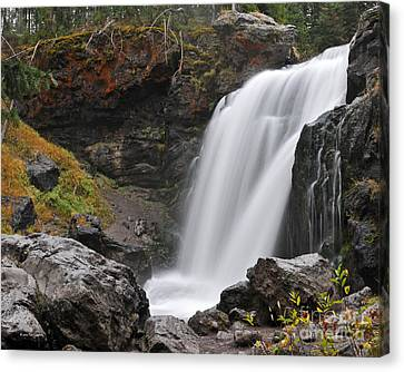 Moose Falls Yellowstone National Park Nature Waterfall Canvas Print
