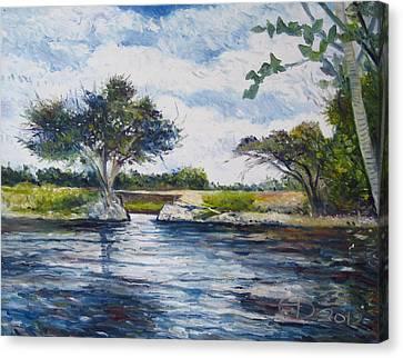 Mopani Bridge Maun Botswana Canvas Print by Enver Larney