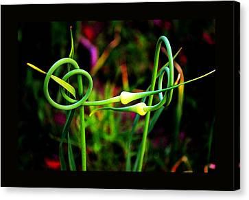 Canvas Print featuring the photograph More Divine Garlic by Susanne Still