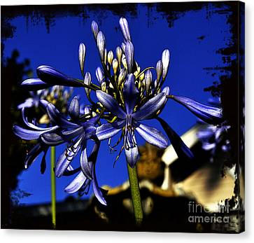 Canvas Print featuring the photograph Morning Blooms by Clayton Bruster