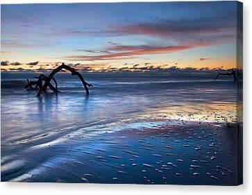 Jeckll Island Canvas Print - Morning Calm At Driftwood Beach by Debra and Dave Vanderlaan