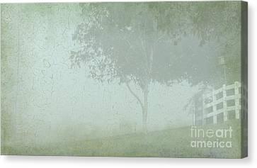 Morning Fog Canvas Print by Judi Bagwell