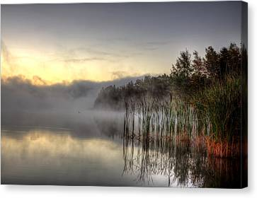 Morning Fog With A Loon Canvas Print by Gary Smith