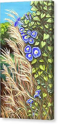 Arcylic Canvas Print - Morning Glory by Carol OMalley