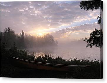 Morning Glory Canvas Print by Larry Ricker