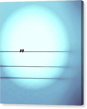 Morning Hopes  Canvas Print by Marianna Mills