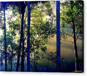 Morning Hues Canvas Print