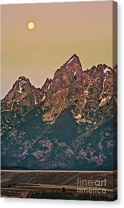 Morning Light Canvas Print by Robert Bales