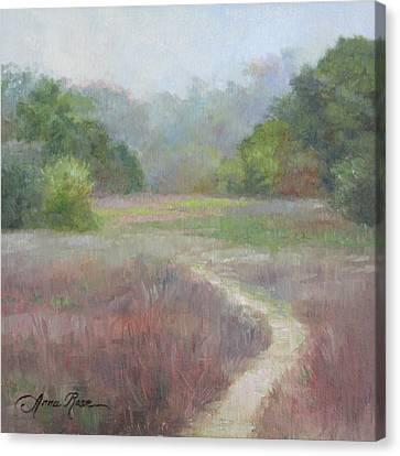 Morning Mist Canvas Print by Anna Rose Bain