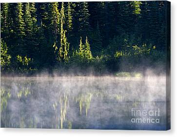Morning Mist Canvas Print by Mike  Dawson