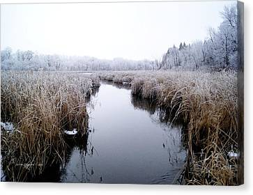 Canvas Print featuring the photograph Morning Rime by Steven Clipperton