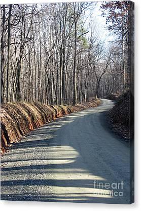 Morning Shadows On The Forest Road Canvas Print by Ausra Huntington nee Paulauskaite