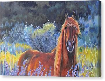 Morning Splendor Canvas Print by Melody Perez