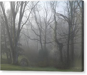 Morning Winter Fog Canvas Print