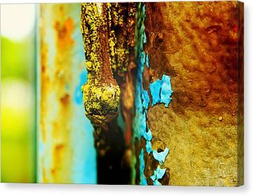 Moss And Rust II Canvas Print by Toni Hopper