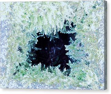 Canvas Print featuring the photograph Moss Geode by Renee Trenholm