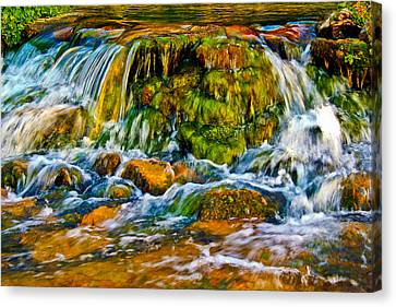 Mossy Falls Canvas Print by Joshua Dwyer