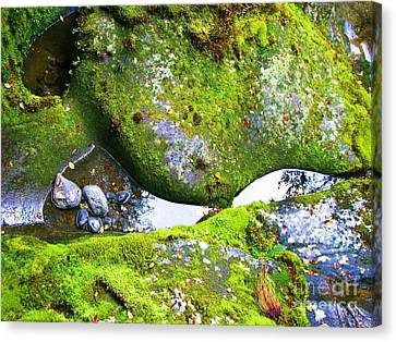 Canvas Print featuring the photograph Mossy Rocks And Water Reflections by Michele Penner