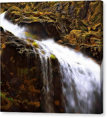 Canvas Print featuring the photograph Mossy Rocks by Thomas Born