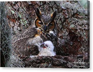 Mother And Baby Owl Canvas Print by Barbara Bowen