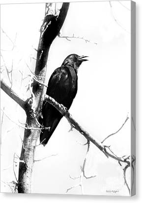 Mother Crow Canvas Print by Rhonda Strickland