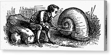 Mother Goose: Snail Canvas Print by Granger