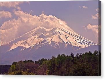 Mount Fuji Canvas Print by David Rucker