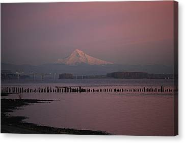 Mount Hood And Columbia River Oregon Washington Canvas Print by Sam Amato