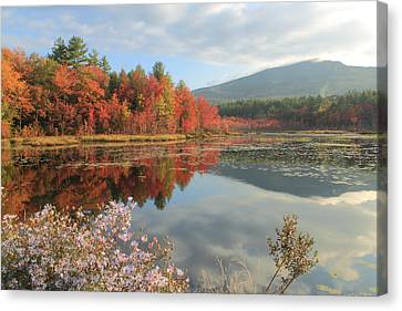 Mount Monadnock Foliage And Asters Canvas Print by John Burk