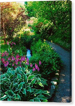 Mount Usher Gardens, Co Wicklow Canvas Print by The Irish Image Collection