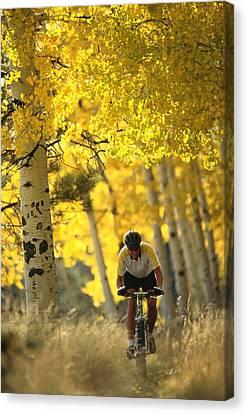 Mountain Biking Through A Grove Canvas Print by Bill Hatcher