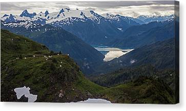 Mountain Flock Canvas Print by Mike Reid