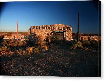 Canvas Print featuring the photograph Mountain Lions At Two Guns by Lon Casler Bixby