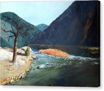 Mountain River Canvas Print by Stephen  Hanson