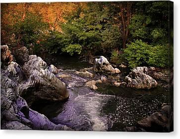 Mountain River With Rocks Canvas Print by Radoslav Nedelchev