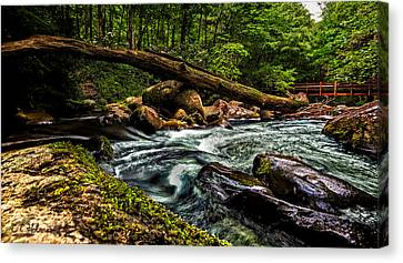 Mountain Stream Iv Canvas Print by Christopher Holmes