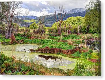 Mountain Valley Marsh - Hdr Canvas Print by Gary Whitton