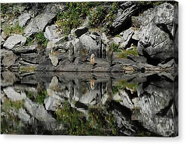 Mt Five Canvas Print by Arlyn Petrie