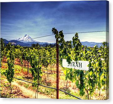Mt Hood Winery Canvas Print by Vicki Jauron