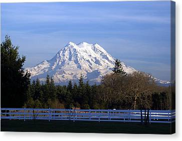 Mt. Rainier Fenced In Canvas Print by Rob Green