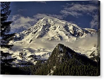 Mt Rainier Canvas Print by Heather Applegate