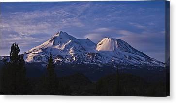 Mt Shasta Canvas Print by Albert Seger